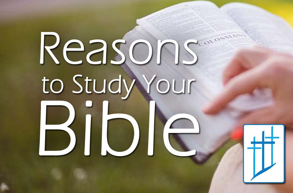 Reasons to Study Your Bible